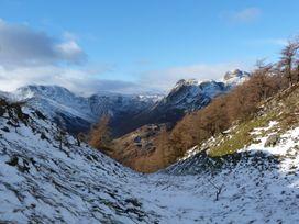 Acorn - Lake District - 951730 - thumbnail photo 19
