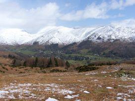 Acorn - Lake District - 951730 - thumbnail photo 20