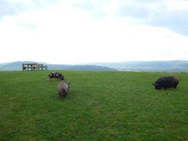 Lunnon Farm - Herefordshire - 955888 - thumbnail photo 13