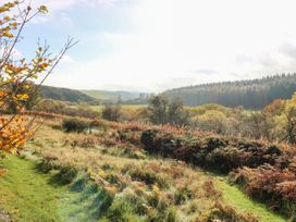 St Agnes - Scottish Lowlands - 959808 - thumbnail photo 26