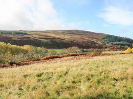 St Agnes - Scottish Lowlands - 959808 - thumbnail photo 27