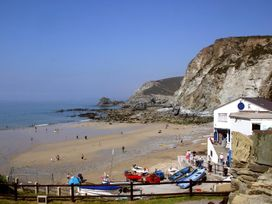 Copper Cottage - Cornwall - 960091 - thumbnail photo 20