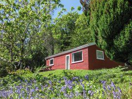 Bluebell Lodge - Cornwall - 962651 - thumbnail photo 1