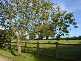 The Moors Cottage - Shropshire - 963816 - thumbnail photo 17