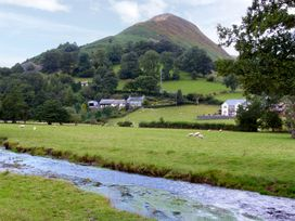 River's Nest - North Wales - 968593 - thumbnail photo 12