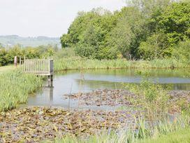 Ramblers - Mid Wales - 969922 - thumbnail photo 26