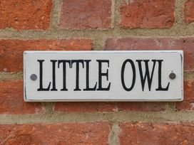 Little Owl - Lincolnshire - 971863 - thumbnail photo 3