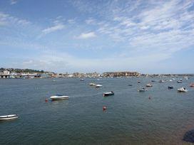 The Dolphins - Devon - 975895 - thumbnail photo 15