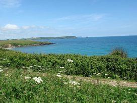 Blue Seas - Cornwall - 976468 - thumbnail photo 38