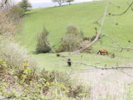 16 Badgers Retreat - Yorkshire Dales - 979659 - thumbnail photo 13