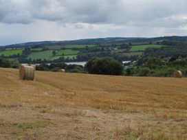 The Meadow - Cornwall - 983138 - thumbnail photo 14