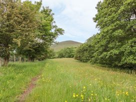 Dingle Den - Herefordshire - 986635 - thumbnail photo 11