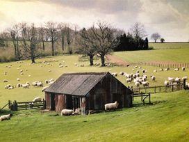 Cobnut Barn - Cotswolds - 988667 - thumbnail photo 27