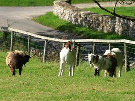 Cobnut Barn - Cotswolds - 988667 - thumbnail photo 45