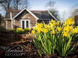 Frome Lodge House - Dorset - 994210 - thumbnail photo 15