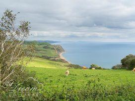 Lilliput - Dorset - 994340 - thumbnail photo 38