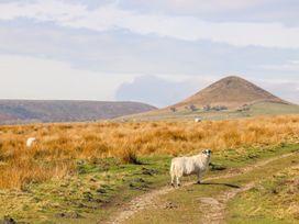 Thompson Rigg Barn - Whitby & North Yorkshire - 997270 - thumbnail photo 13