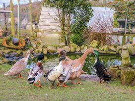 Hibiscus Hideaway - Devon - 997705 - thumbnail photo 18
