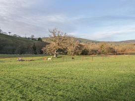The Paddock - Mid Wales - 998388 - thumbnail photo 32