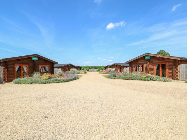 Beech Lodge - 972998 - photo 1