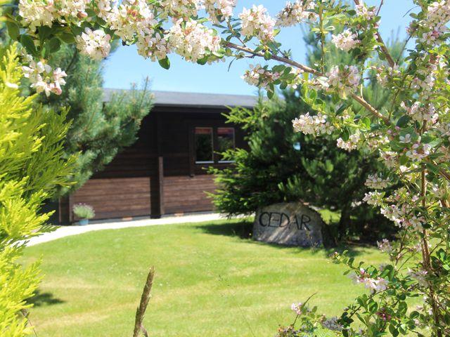 Cedar Lodge - 974713 - photo 1
